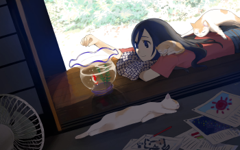HD Wallpaper | Background ID:848040