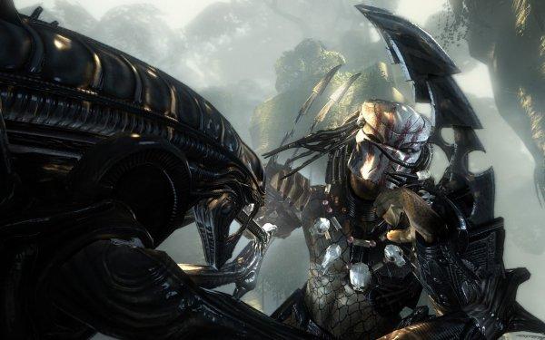Video Game Aliens Vs. Predator Alien Predator Battle HD Wallpaper   Background Image