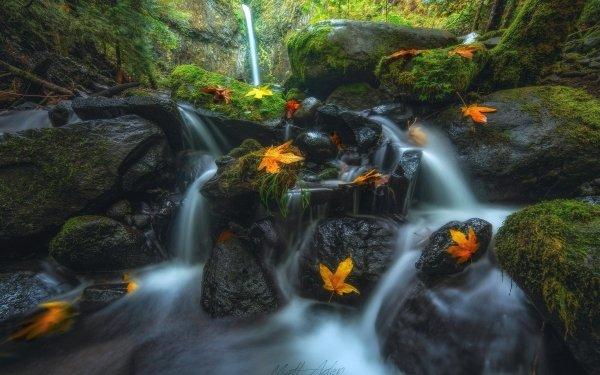 Earth Waterfall Waterfalls Lower Dry Creek Creek Fall Leaf Oregon HD Wallpaper | Background Image