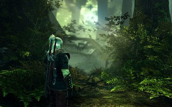 Computerspiel - The Witcher 2: Assassins Of Kings Wallpapers and Backgrounds ID : 84956
