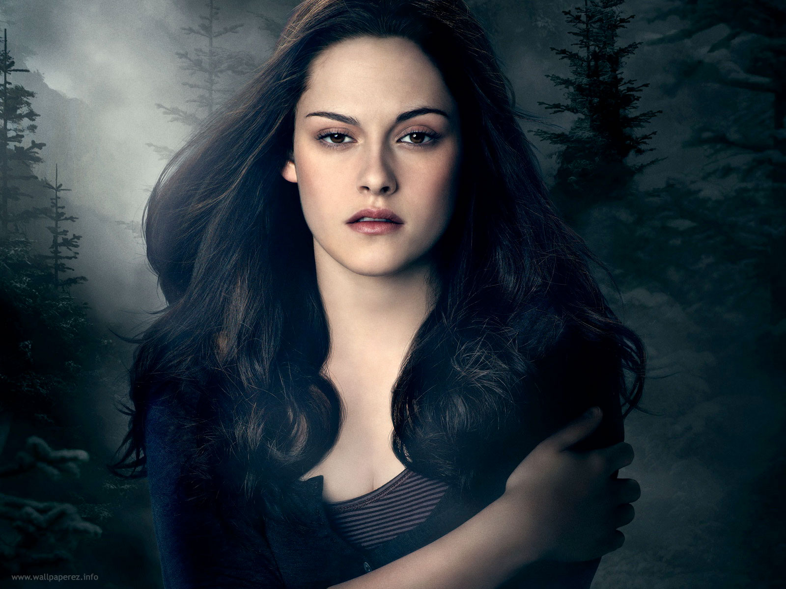 10 the twilight saga: eclipse hd wallpapers | background images