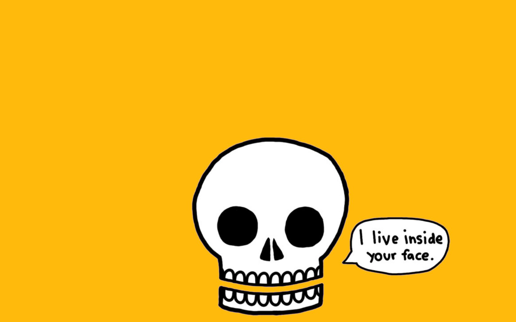 Humor - Funny  Skull Wallpaper