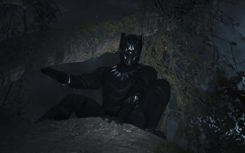 105 Black Panther Hd Wallpapers Background Images Wallpaper Abyss