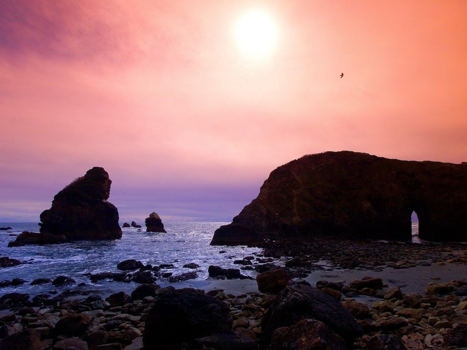 Earth - Sunrise  Photography Landscape Skyline Ocean Sea Beach Coastline Shore Rock Bird Wallpaper