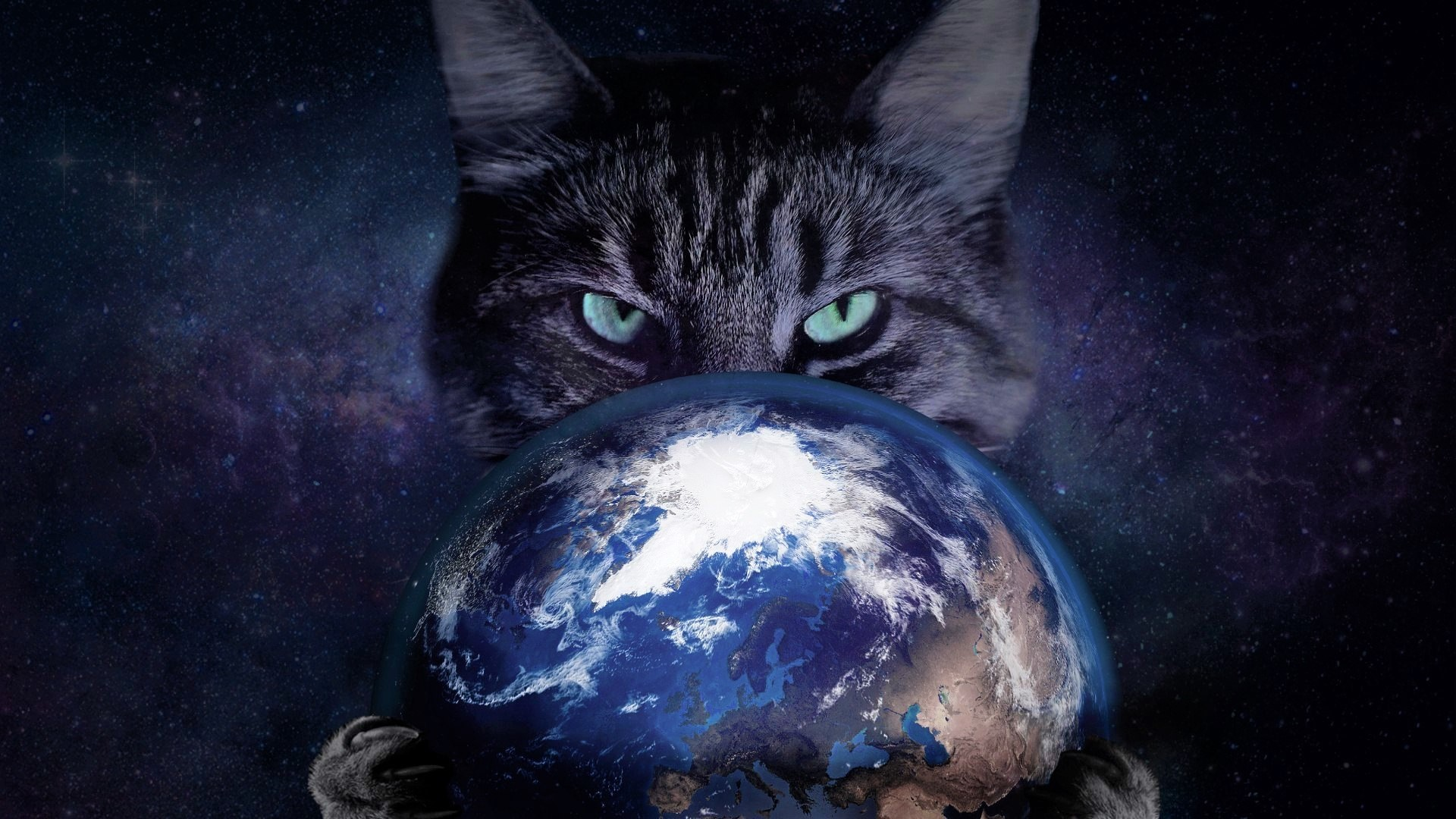 Cat Holding Planet Earth Full HD Wallpaper And Background Image