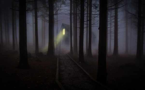 Dark House Forest Path Fog HD Wallpaper | Background Image