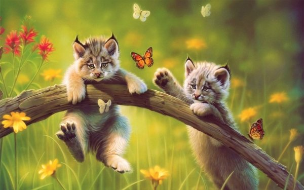 Artistic Painting Cat Meadow Lynx Cute Butterfly Cub Baby Animal HD Wallpaper | Background Image