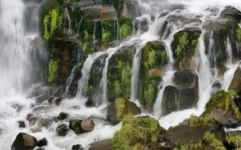 Earth - Waipunga Falls Wallpapers and Backgrounds ID : 86998