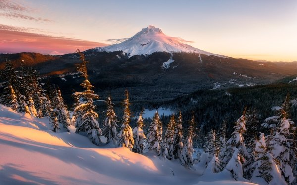 Earth Mount Rainier Mountains Nature Landscape Winter USA Mountain Snow Forest HD Wallpaper | Background Image
