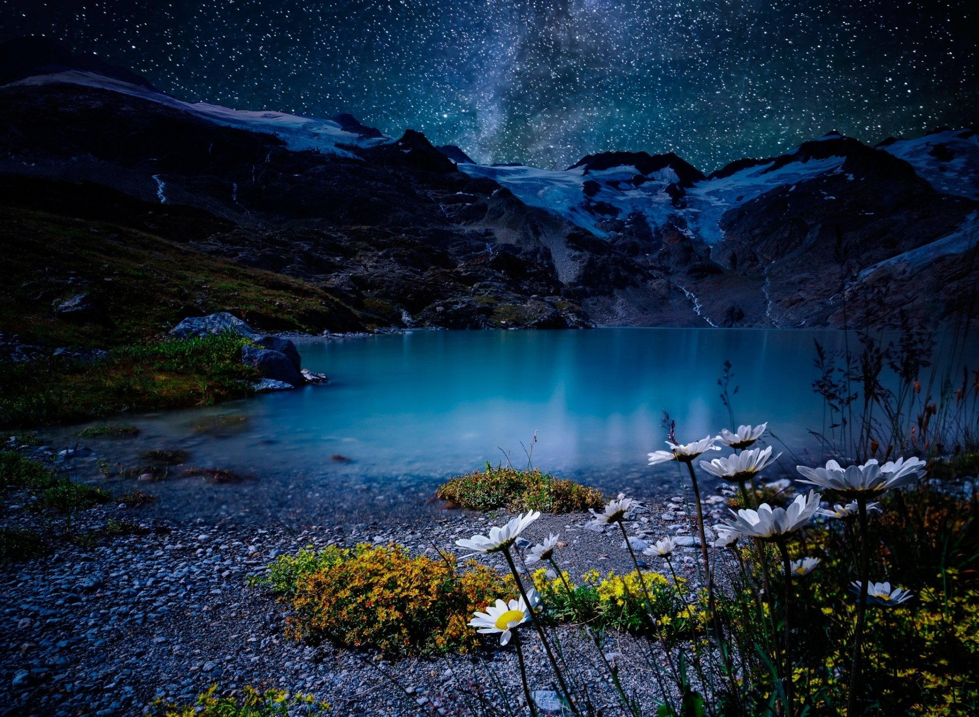 Earth - Night  Nature Lake Stars White Flower Wallpaper