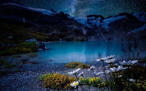 Earth Night Nature Lake Stars White Flower HD Wallpaper | Background Image