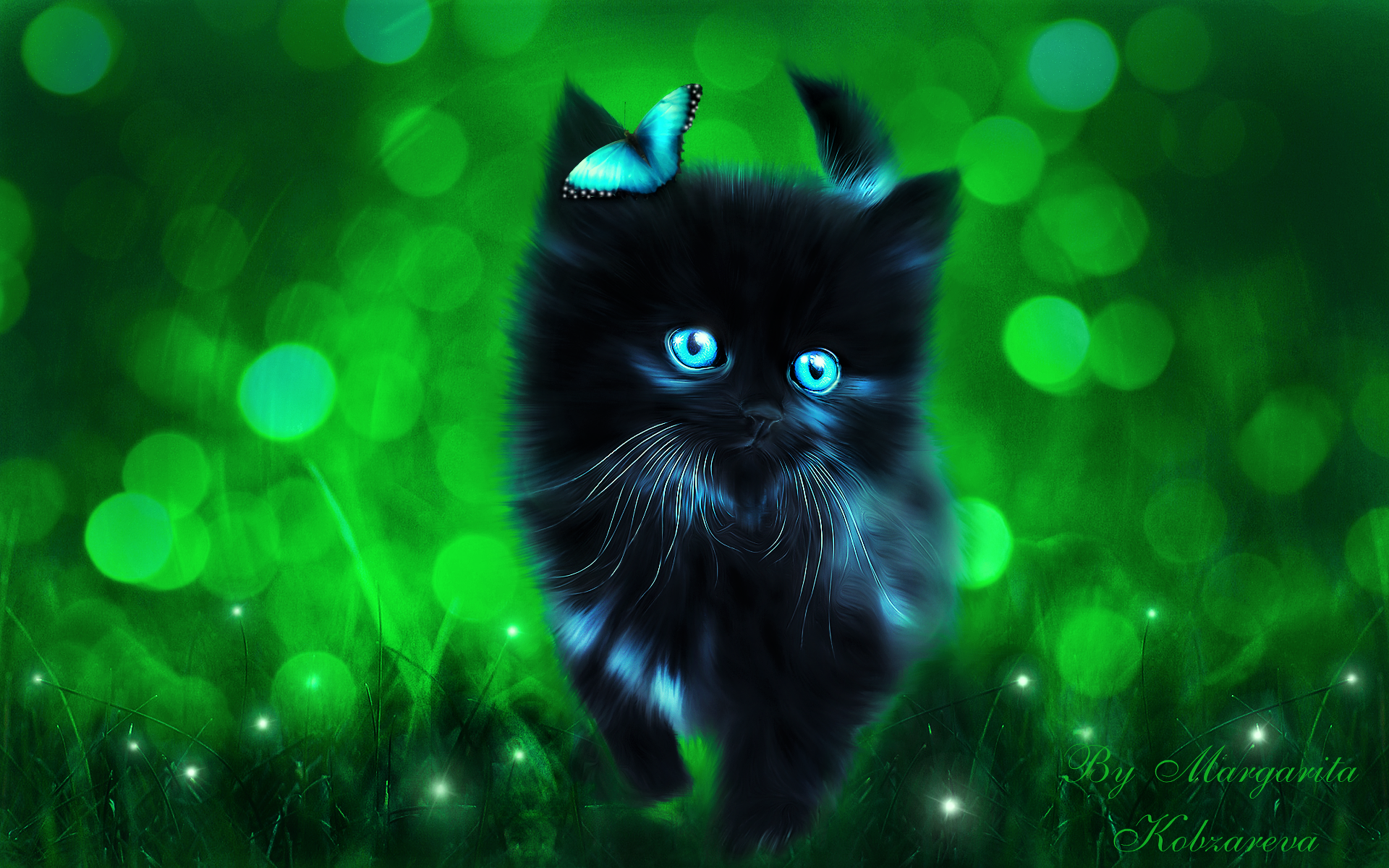 Popular Wallpaper Cat Butterfly - 883107  Pictures_569312 .png