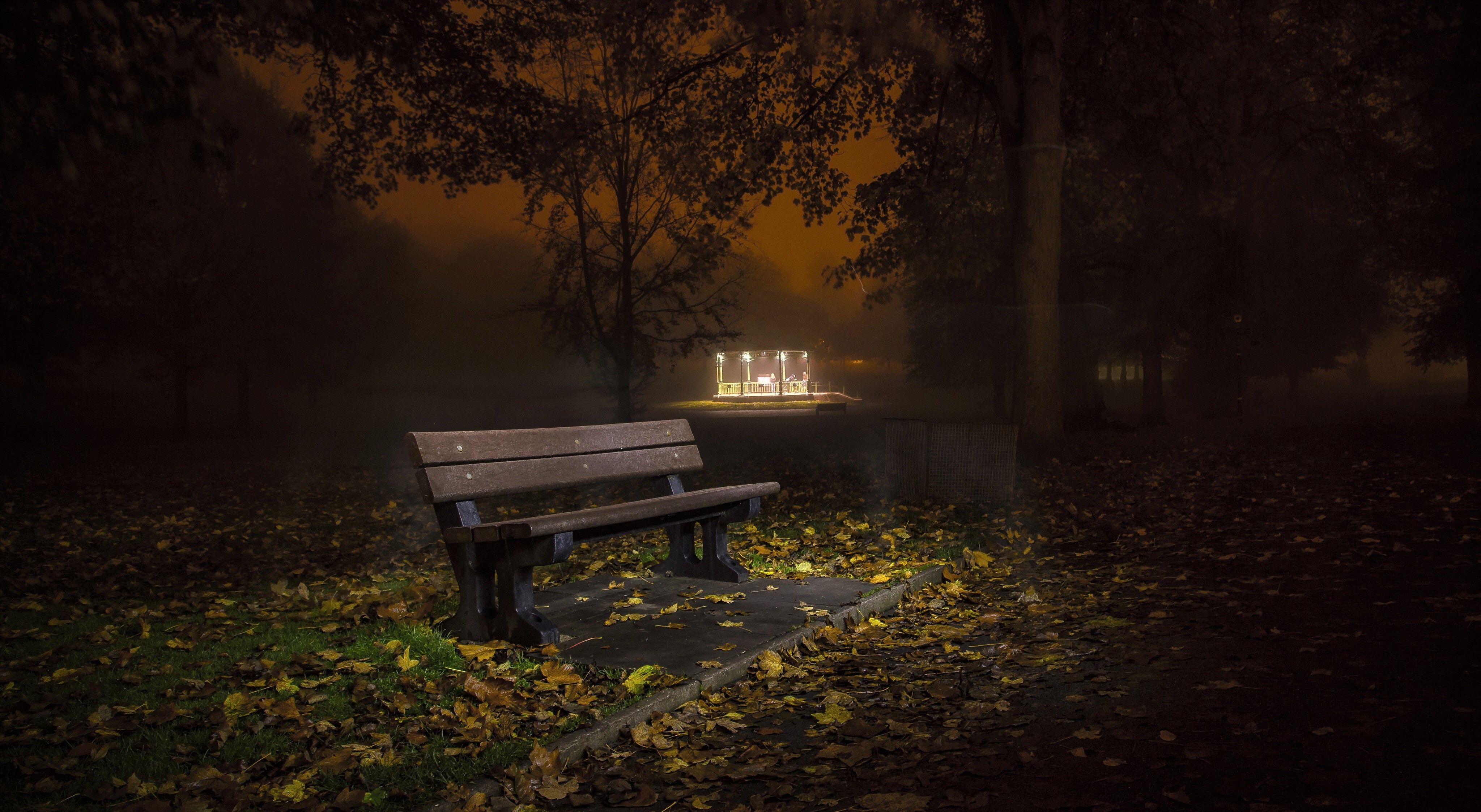 Bench In Autumn Park At Night 4k Ultra Hd Wallpaper Background