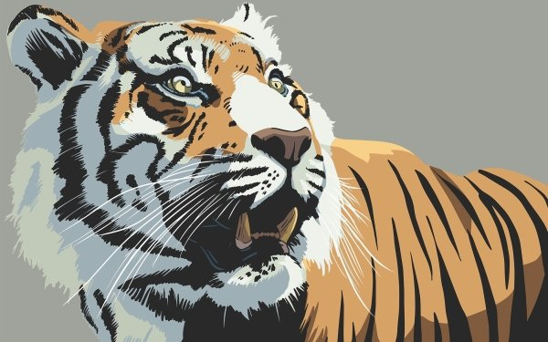 Animal Tiger Cats Artistic Stare HD Wallpaper   Background Image