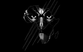 222 Black Panther Marvel Comics Hd Wallpapers Background Images