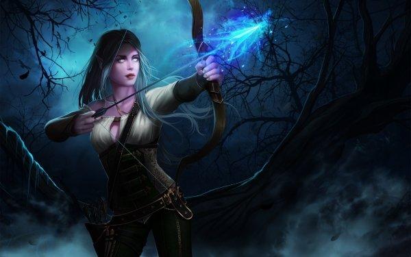 Jeux Vidéo World Of Warcraft Warcraft Bow Elfe Arrow Nuit Archer Blue Hair Long Hair Fond d'écran HD | Image
