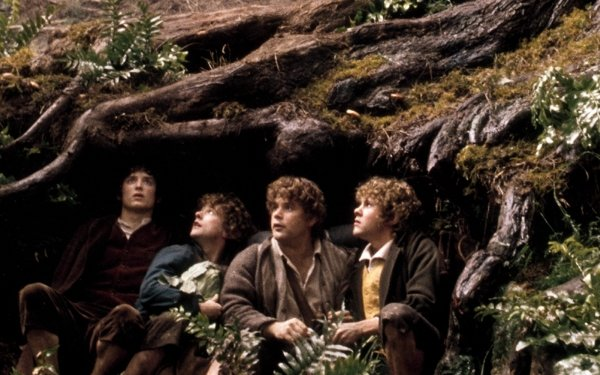 Movie The Lord of the Rings: The Fellowship of the Ring The Lord of the Rings Movies Frodo Baggins Elijah Wood Samwise Gamgee Sean Astin Merry Brandybuck Dominic Monaghan Peregrin Took Billy Boyd HD Wallpaper | Background Image