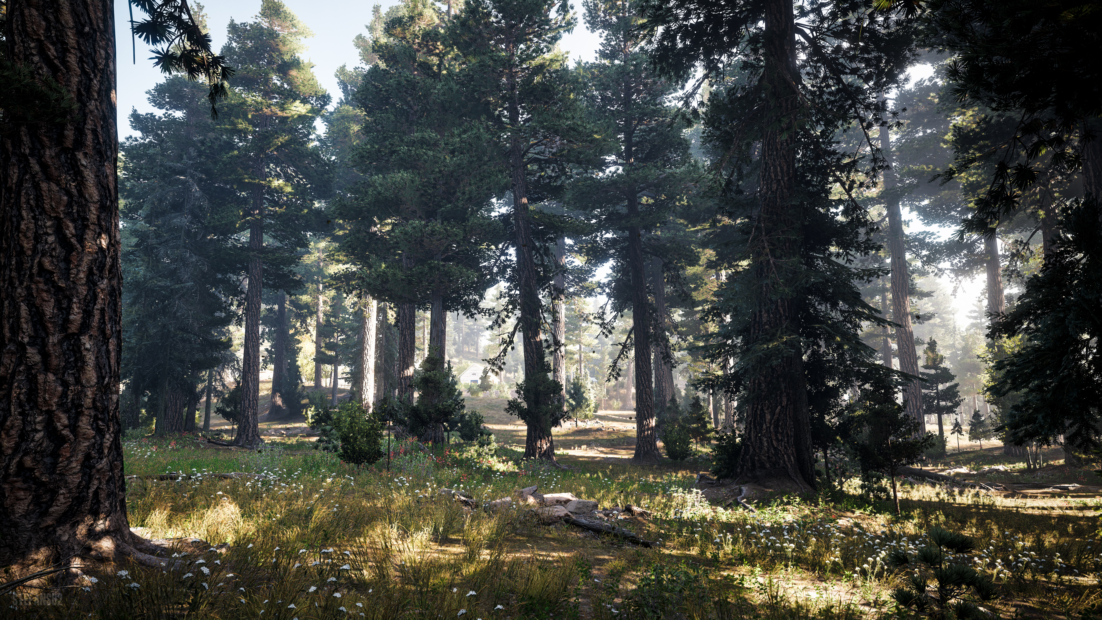 Far Cry 5 Nature S Call 4k Ultra Hd Wallpaper Background Image