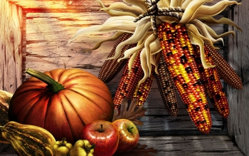 Holiday - Thanksgiving Wallpapers and Backgrounds ID : 91836