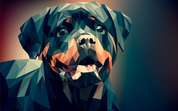 Abstract Facets Rottweiler Dog Low Poly Polygon HD Wallpaper | Background Image