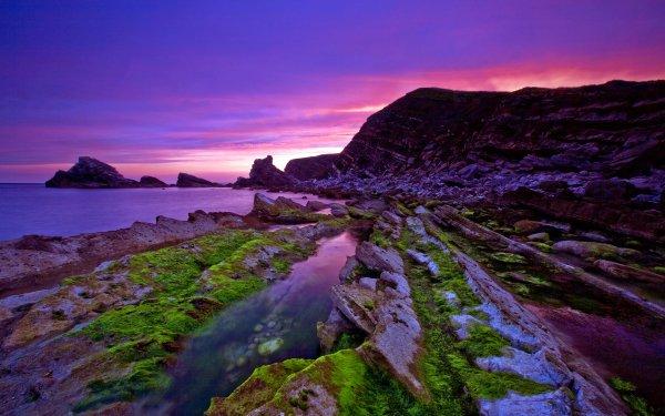 Earth Seascape Rock Moss Water Ocean HD Wallpaper | Background Image