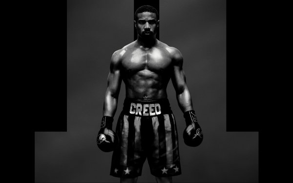 Movie Creed II Michael B. Jordan Adonis Creed Creed Boxing Boxer HD Wallpaper | Background Image