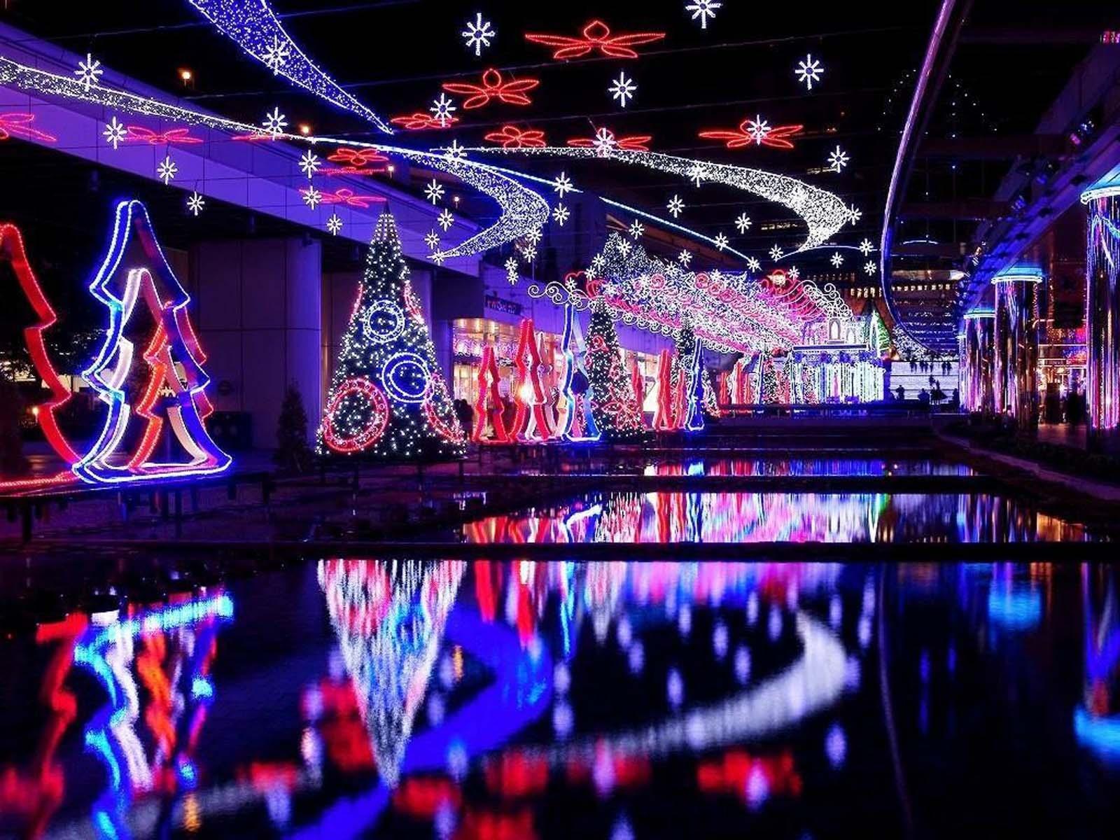 Holiday - Christmas  Christmas Tree Christmas Lights Wallpaper