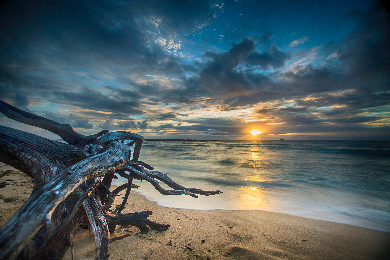 Ocean Sunset 5k Retina Ultra Hd Wallpaper Background Image