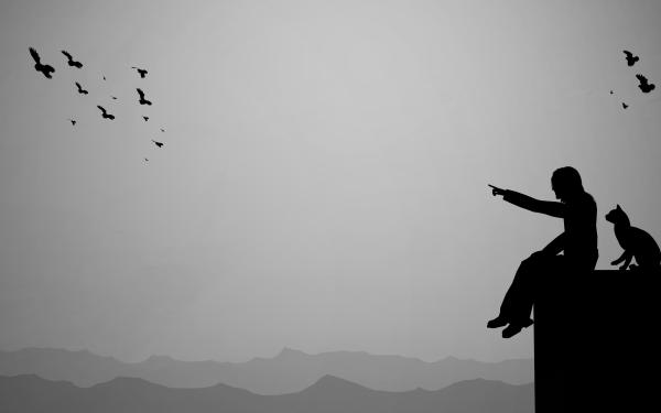 Artistic Black & White Cat Flock Of Birds Sad HD Wallpaper | Background Image