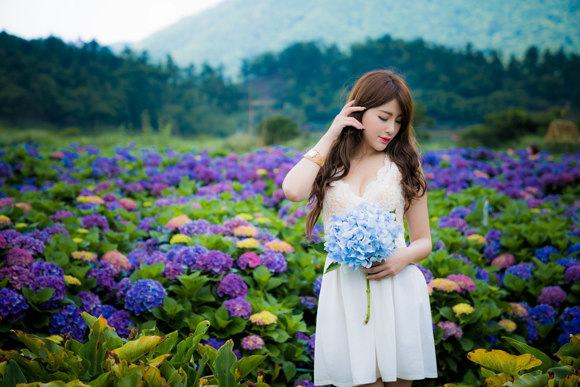 Wallpapers ID:937220