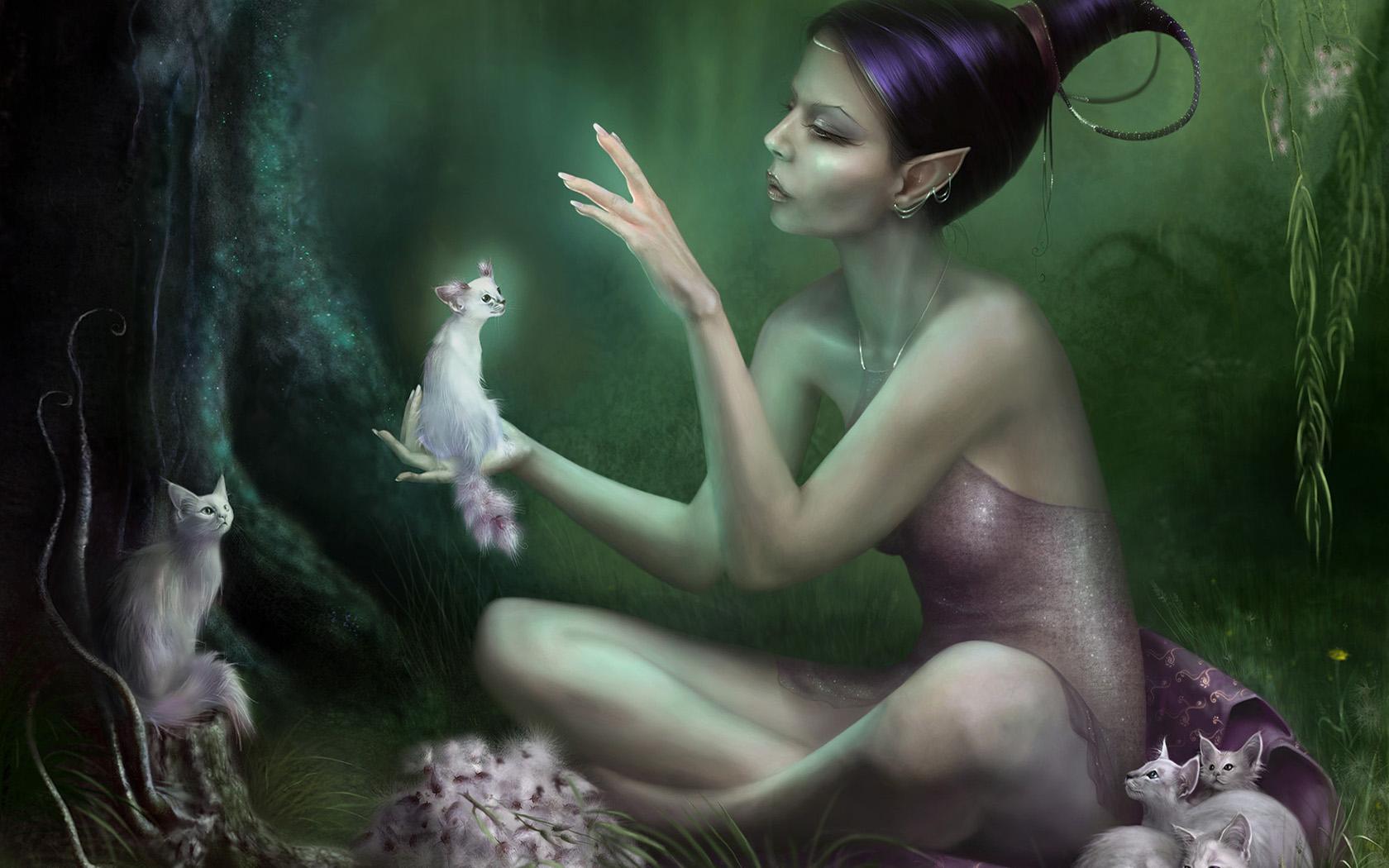 Fantasy - Fairy  Cat Wallpaper