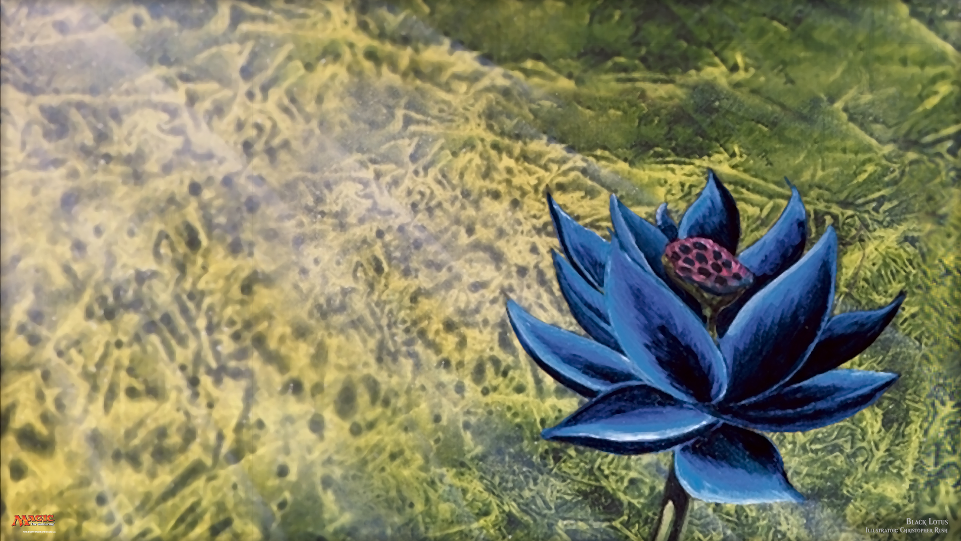 Magic The Gathering Hd Wallpaper Background Image 1920x1080 Id 943273 Wallpaper Abyss