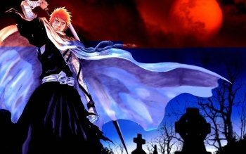 Anime - Bleach Wallpapers and Backgrounds ID : 96496