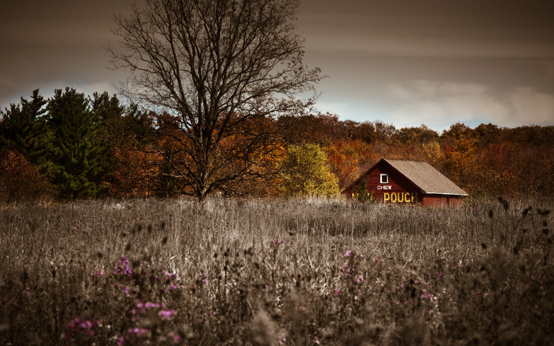 Earth - Landscape  Barn Fall Meadow Wallpaper