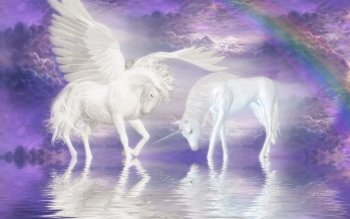 Fantasy - Unicorn Wallpapers and Backgrounds ID : 96644