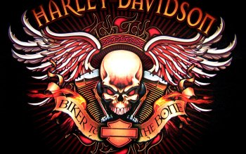 Vehicles - Harley-Davidson Wallpapers and Backgrounds ID : 98456