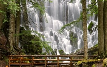 Earth - Ramona Falls Wallpapers and Backgrounds ID : 99368